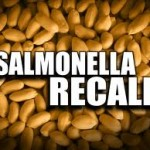 peanut recall salmonella fear, raw and cooked peanut products